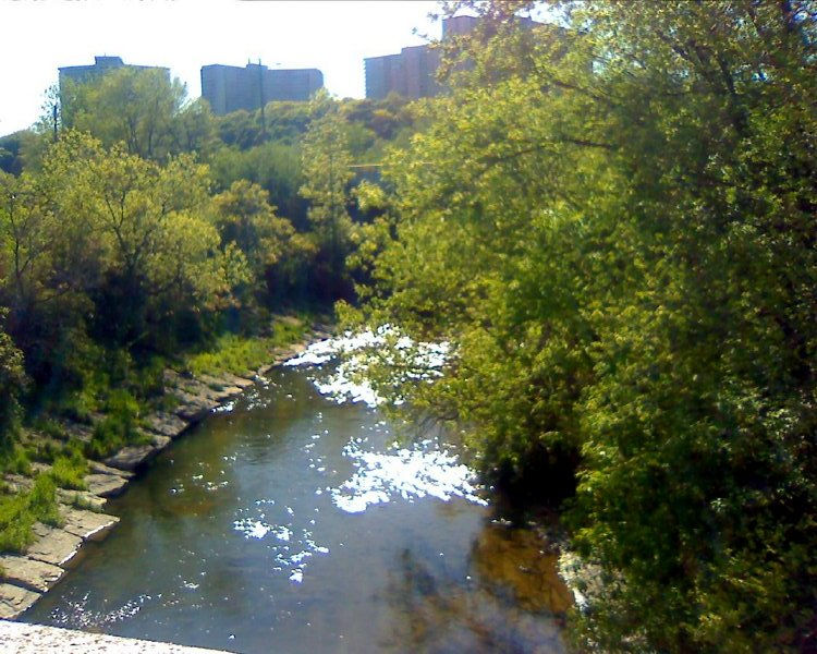 Don River in sunlight