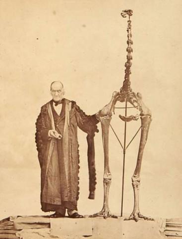 Mad Scientist with Giant Bird Skeleton - Halloween