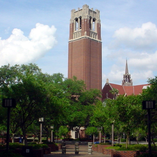 a scene in Gainesville, Florida, possibly the university campus