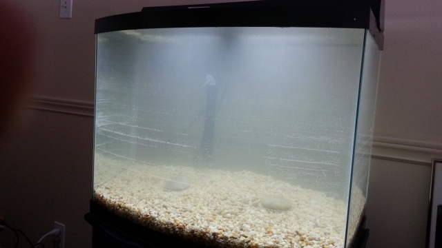 An aquarium with only gravel and water. The water is cloudy