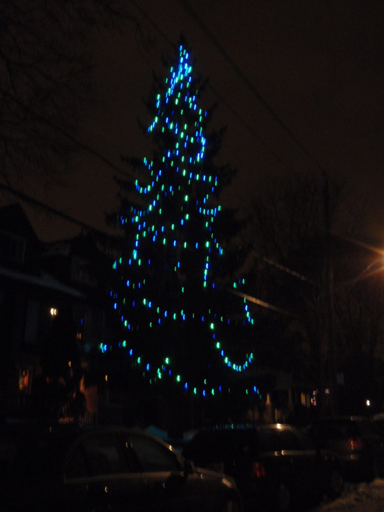 a conifer at night with blue and green lights