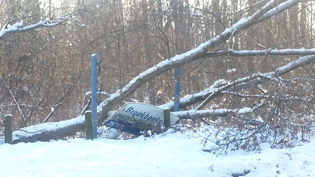 A fallen tree crushes a park sign