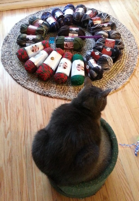 about 22 rolls of yarn are arranged in a circle on a circular rug, with a cat looking on