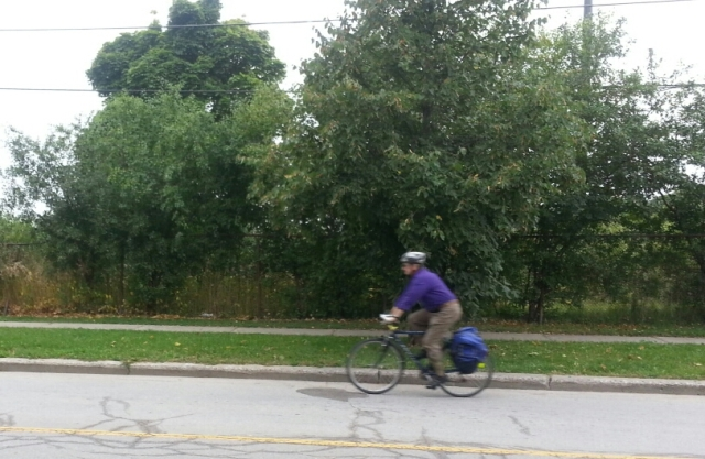 A man in a purple shirt is riding a bicycle with panniers